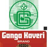 gangakaveri
